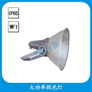 FGT713 大功率投光灯