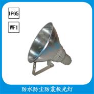 FGT711 防水防尘防震投光灯