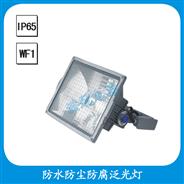 FGD516 防水防尘防腐泛光灯