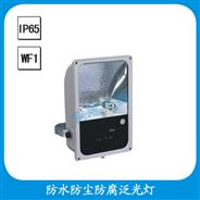 FGD513  防水防尘防腐泛光灯