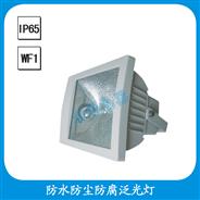 FGD510  防水防尘防腐泛光灯