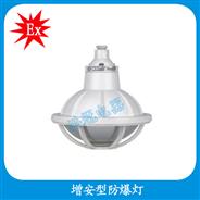 BAD52-e 增安型防爆灯(工程塑料)