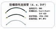 BNG 防爆挠性连接管