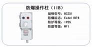 BCZ51 防爆操作柱