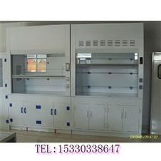 重庆实验室设备 PP通风柜