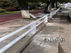 阜阳市不锈钢复合管护栏