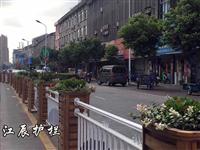 荆州市市政花箱护栏
