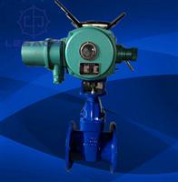 Z941F46-16C電動襯氟閘閥