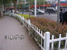 丽水市绿化带护栏