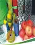 包装网袋,玩具网袋,水果网袋,工艺品网袋