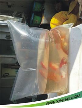 鱼苗加氧袋,水生活体便携袋,海产真空袋