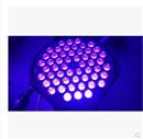 54颗3W LED紫光帕灯