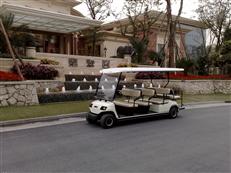 11座高尔夫观光车