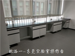 东莞实验室操作台