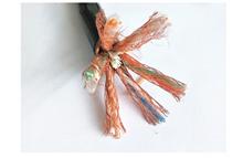 DJYPV22铠装计算机通信电缆