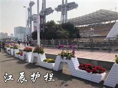上海花箱白菜网彩金厂家