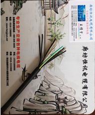KFV22-16*2.5控制氟塑料高温电缆货期短