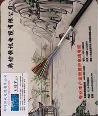 埋地通信电缆HYA53 30x2x0.8规格
