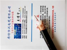 阻燃计算机电缆:ZR-DJYVP厂家价格