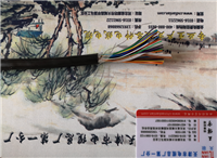 ZRVV22阻燃电缆产品新闻