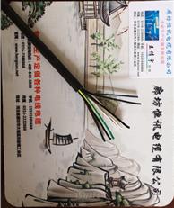 电缆-低烟无卤阻燃控制电缆 DWZ-KVV