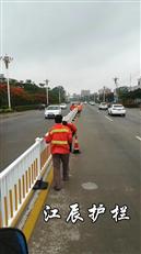 宁波市隔离护栏定制