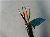DJFPVR 氟塑料软芯计算机电缆