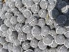火山岩生物流离球产品介绍