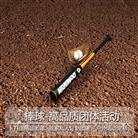 棒球-高品質團體活動