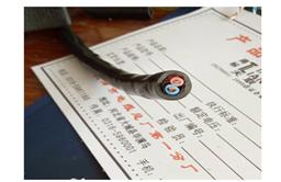 RVV2芯3芯防水阻燃电缆线*1.5/2.5/4/6平方护套线国标铜芯电缆