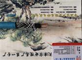 ZR-PTYA22 阻燃铁路信号电缆