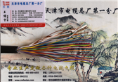 ZRC-HYA23市内通信电缆