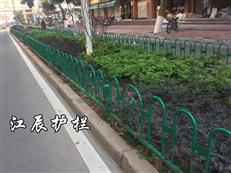 黄山市京式绿化带护栏供应