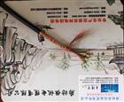 聚氯乙烯绝缘护套 控制电缆ZR-KVV