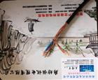 DWZ-KVV 低烟无卤阻燃控制电缆