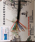 低烟无卤阻燃控制电缆 -KVV