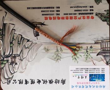 耐火控制电缆 NH-KVV