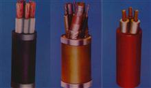 YZW橡套电缆3*4+1*2.5 产品新闻