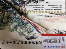 防腐蚀控制电缆ZR-KFFR产品新闻