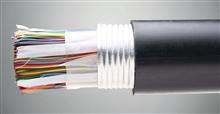耐高温计算机电缆ZR-DJFFP22产品新闻