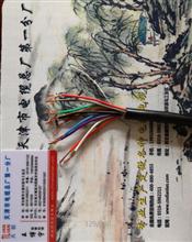 钢带铠装控制电缆ZR-KVV22