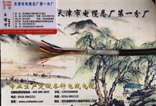 HJVVP5X2X0.5通信电缆产品新闻