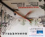 铜芯控制电缆KVVP