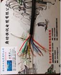 KVVP聚氯乙烯护套编织屏蔽控制电缆