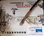 KVVP-22电缆|KVVP-22控制电缆|KVVP-22全塑控制电缆