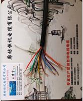 铠装屏蔽控制电缆KVVP-22 ZR-KVVP-22 NH-KVVP-22-500V(450/750