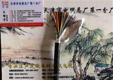 通信电缆HPVV报价产品新闻
