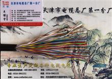 ZRC-HYA53 阻燃通信电缆