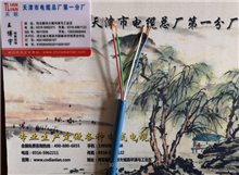 MHYAV煤矿用防爆电缆产品新闻