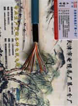 煤矿用阻燃通讯电缆MHYAV50×2×0.6